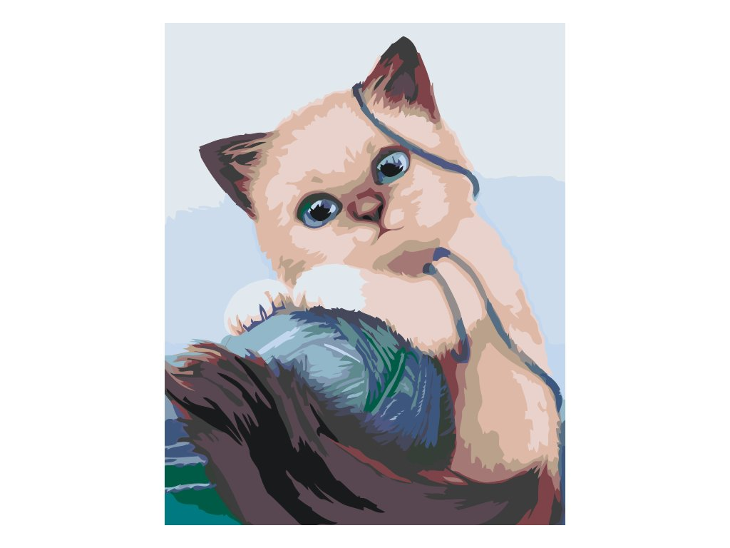 Paint by number - Kitty playing with a ball (Frame With Frame, Size 40x50cm (16'' x 20''))