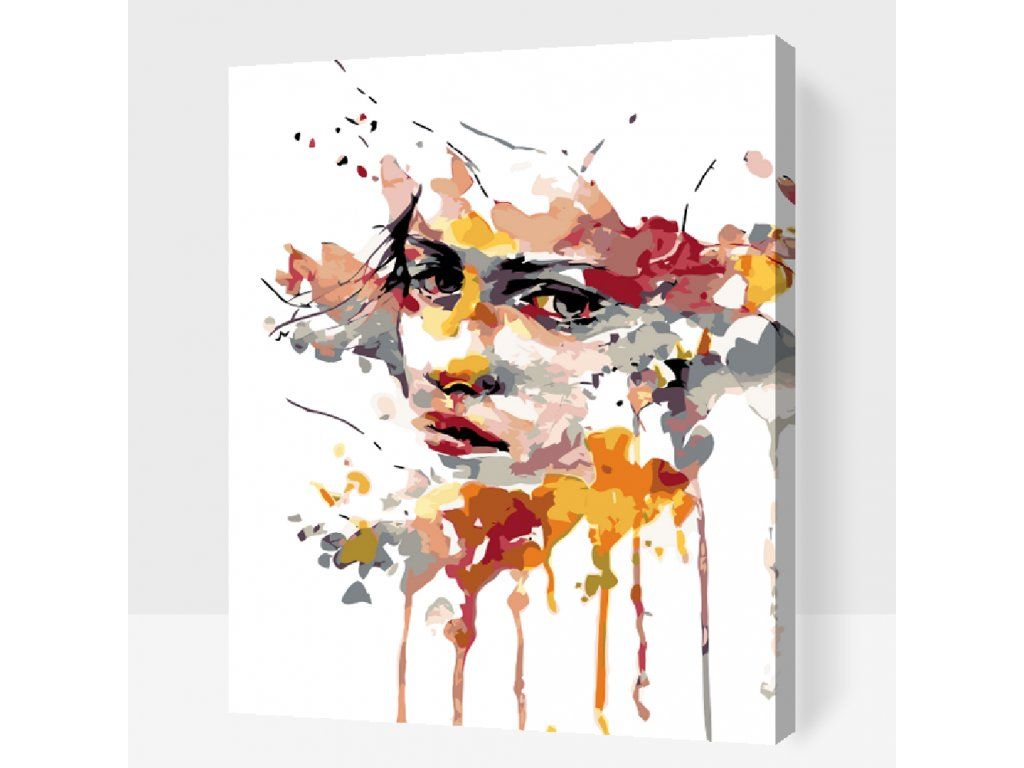 Paint by number - Mysterious face (Frame With Frame, Size 40x50cm (16'' x 20''))