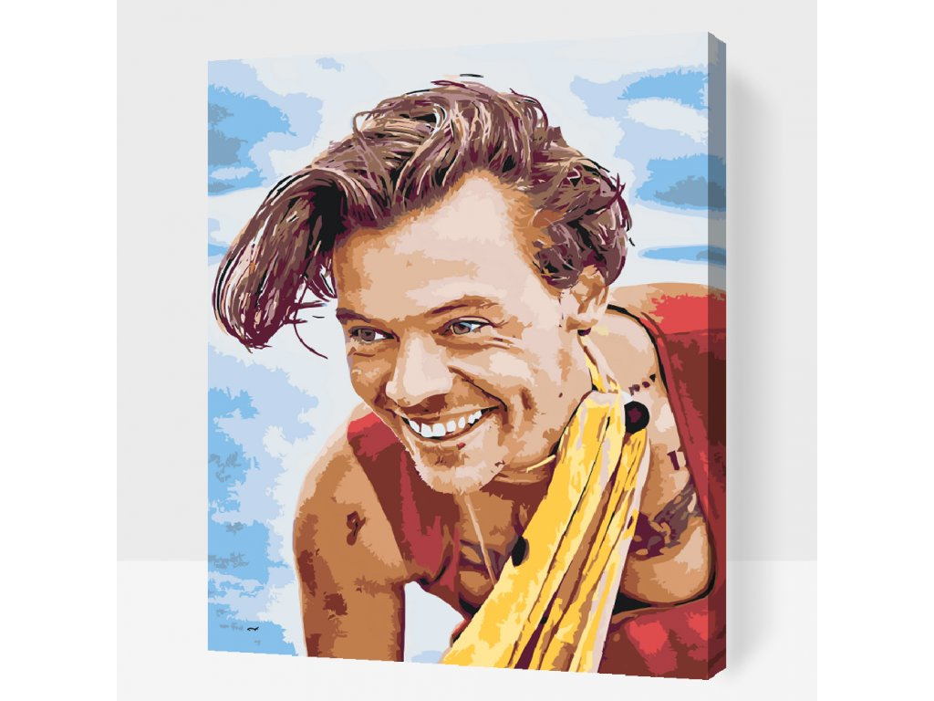 PAINT BY NUMBER - HARRY STYLES15 (Frame Without Frame (canvas only), Size 40x50cm (16'' x 20''))
