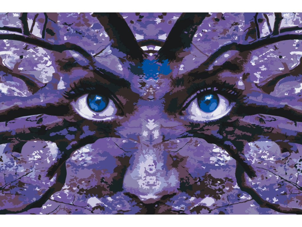 Paint by number - Fantasy Eyes (Frame Without Frame (canvas only), Size 40x60cm (16'' x 24''))