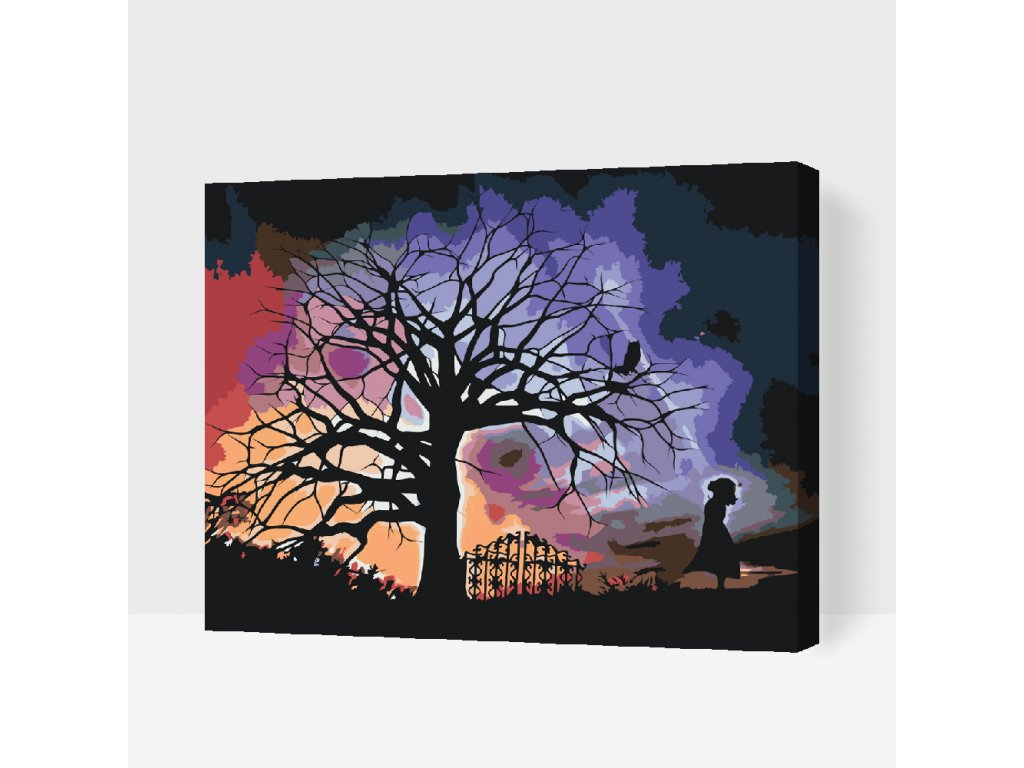 Paint by number - Girl And A Night Sky (Frame Without Frame (canvas only), Size 40x50cm (16'' x 20''))