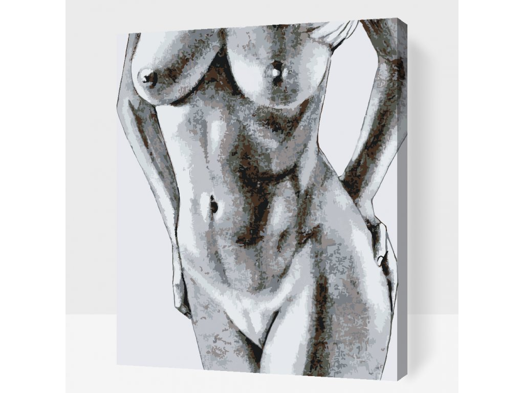 Paint by number - Nude (Frame Without Frame (canvas only), Size 40x50cm (16'' x 20''))