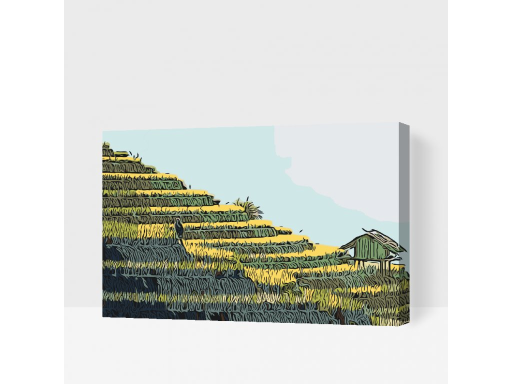 Paint by number - Rice terraces (Frame Without Frame (canvas only), Size 40x60cm (16'' x 24''))
