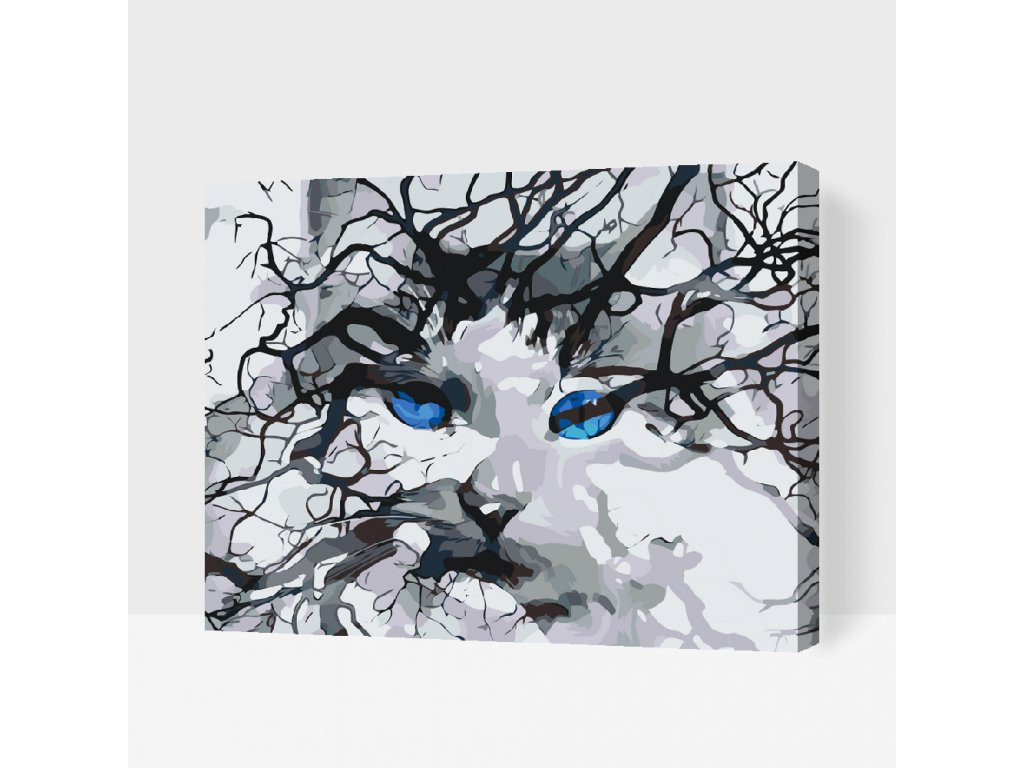Paint by number - Cat Eyes (Frame Without Frame (canvas only), Size 40x50cm (16'' x 20''))