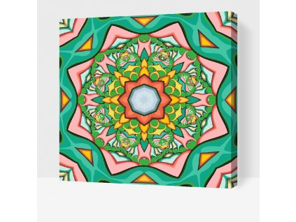 Paint by Number - Mandala1 (Frame Without Frame (canvas only), Size 50x50cm (20'' x 20''))