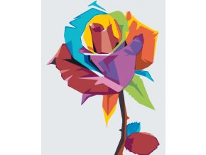 Paint by number - Colored Rose (Frame With Frame, Size 40x50cm (16'' x 20''))