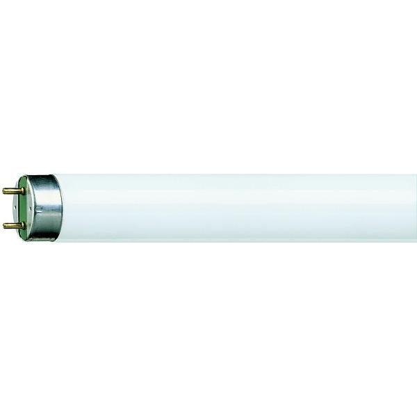 Zářivkové trubice T8