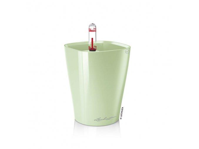 Lechuza mini - Deltini - mátová zeleň
