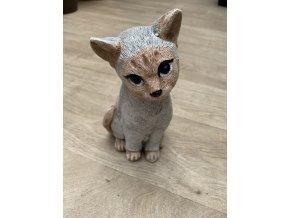 Kočička 23 cm, 2,5 Kg.