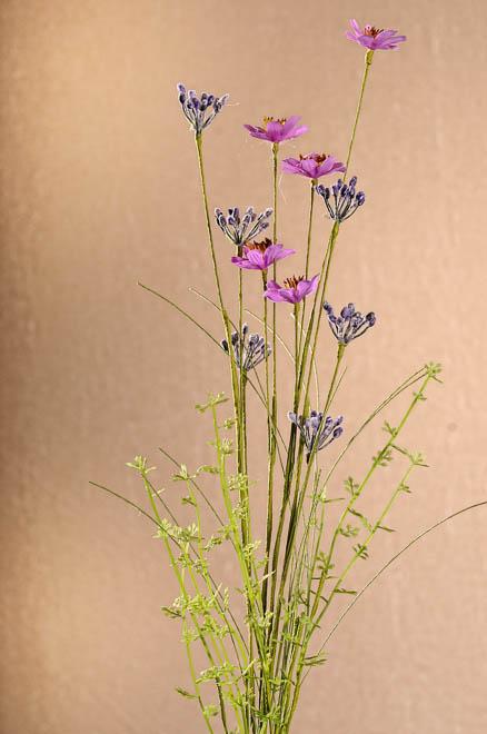 Luční kvítí - vhodné do kytic i věnečků.