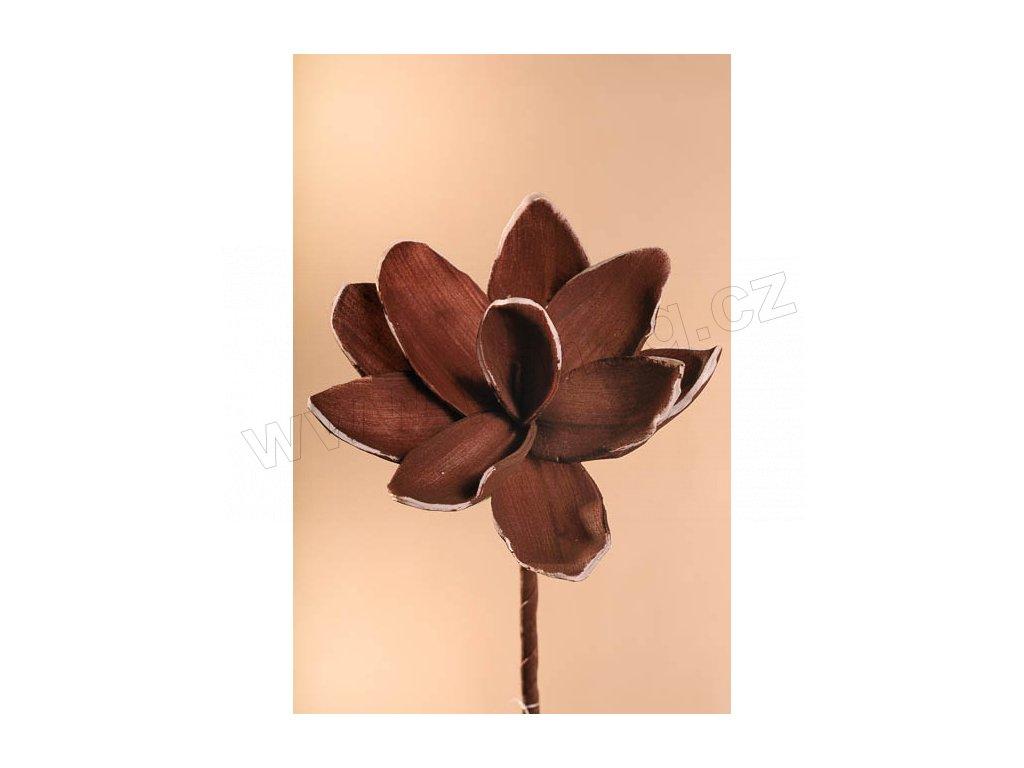 3 81B Aranžovací květina hnědá 18 cm