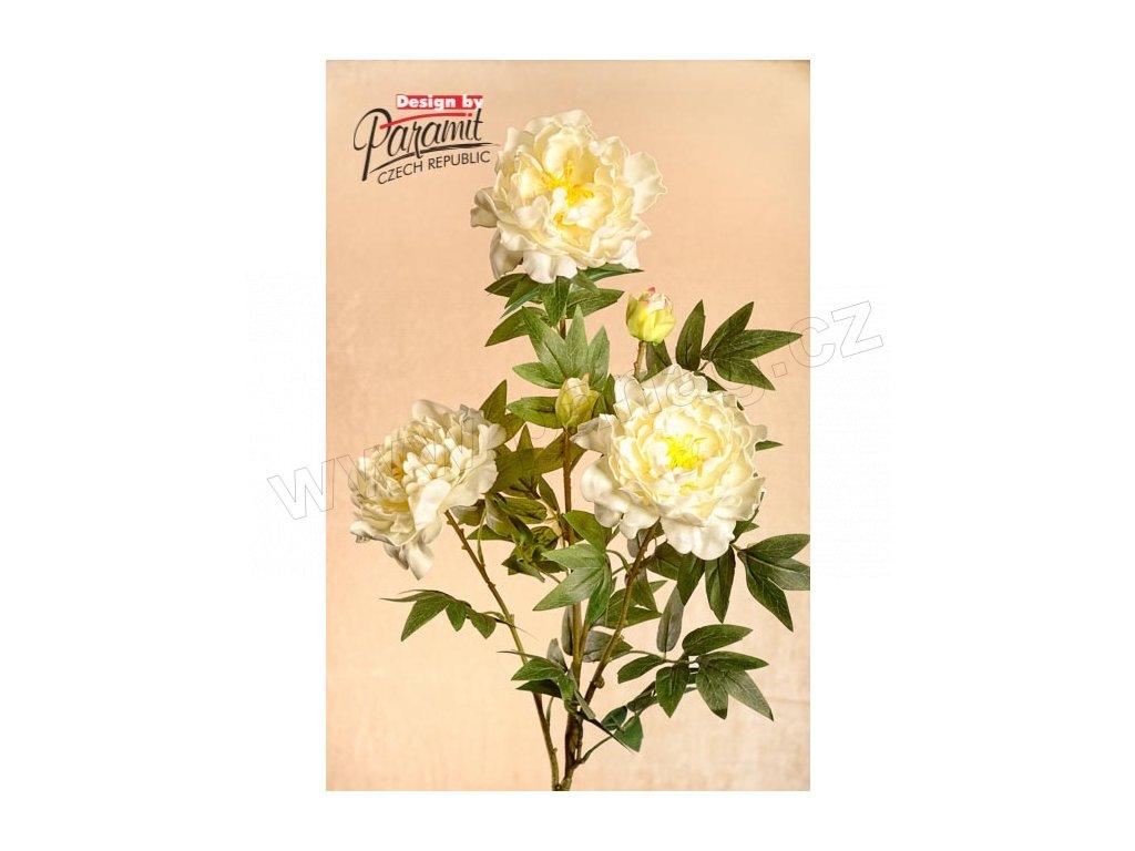 Dekorativní květina pivoně krémová - Paramit - 3-46C