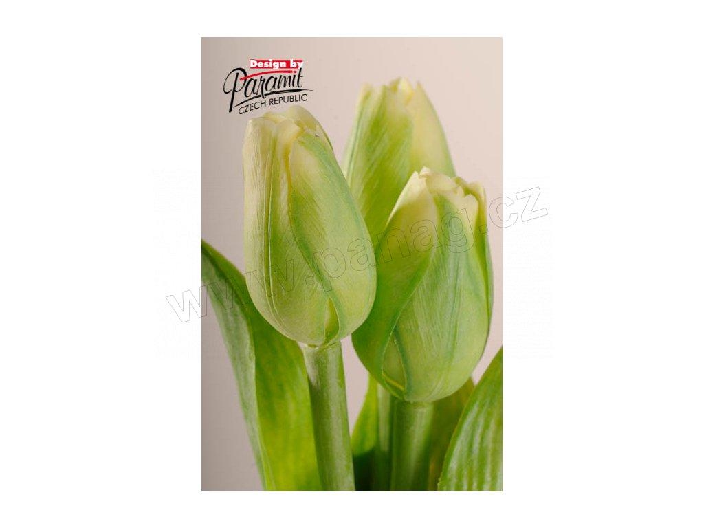 Dekorativní květina francouzský tulipán zelená - Paramit - 107G