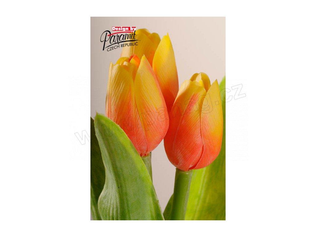 Dekorativní květina francouzský tulipán žluto oranžová - Paramit - 107O2