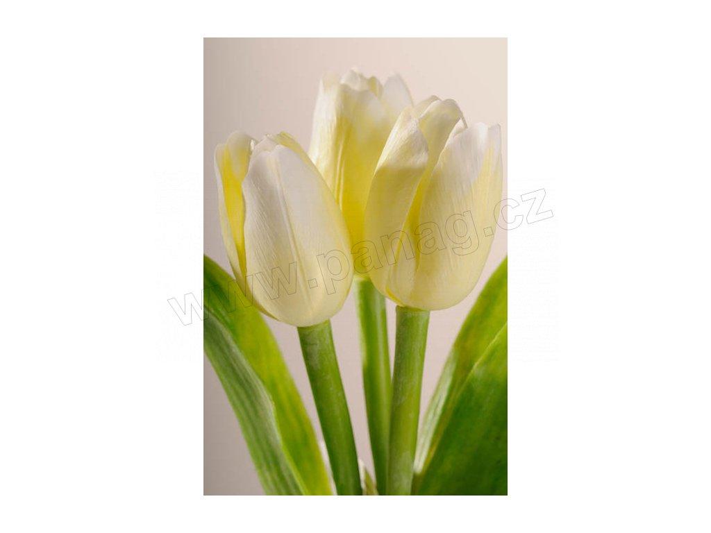 107W Francouzský umělý tulipán bílý 40 cm