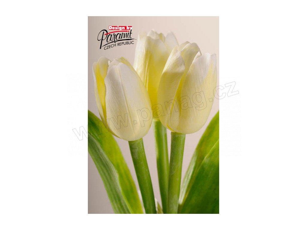 Dekorativní květina francouzský tulipán bílá - Paramit - 107W