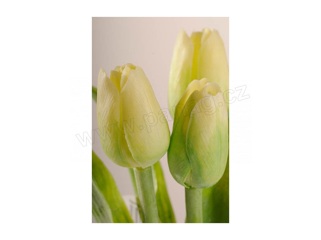 107G1 Francouzský umělý tulipán světle zelený 40 cm