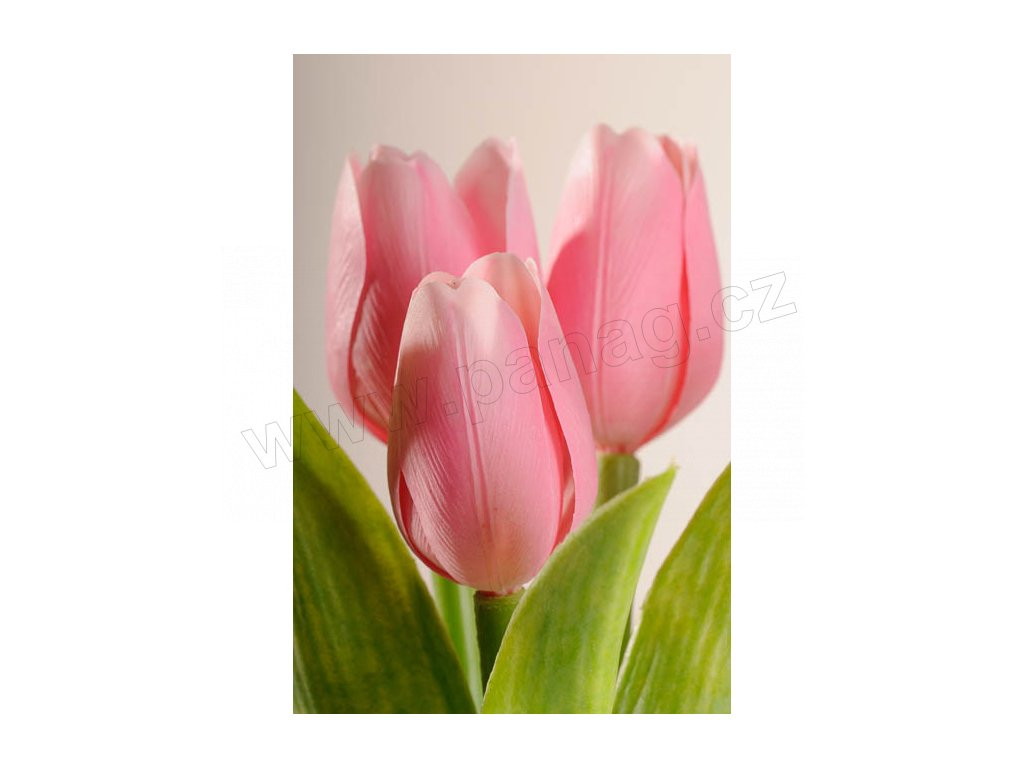 107P6 Francouzský umělý tulipán něžně růžový 40 cm