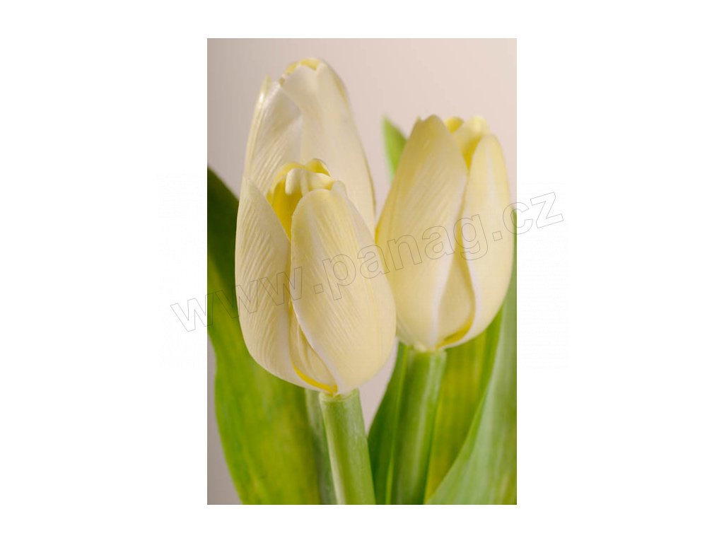 107Y3 Francouzský umělý tulipán pastelově žlutý 40 cm