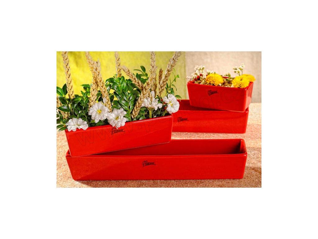 11085 30R Vlasta žardinka červená 30 cm