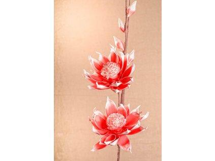 3 83O Aranžovací květina červeno bílá 105 cm