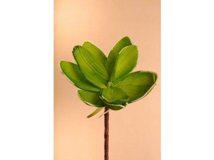 3 81G Aranžovací květina zelená 18 cm