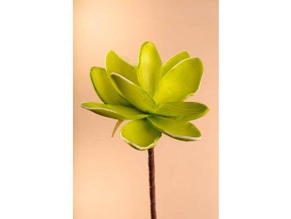 3 81G1 Aranžovací květina světle zelená 18 cm