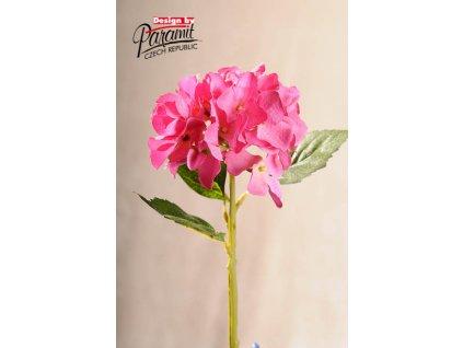 Dekorativní květina hortenzie růžová - Paramit - F100-P