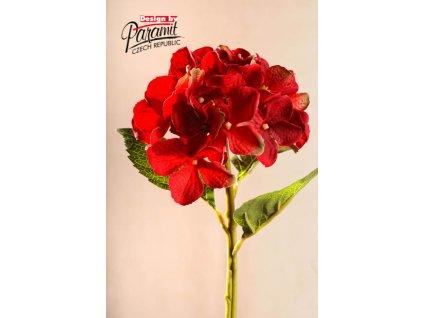 Dekorativní květina hortenzie červená - Paramit - F100-R