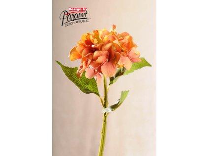 Dekorativní květina hortenzie žlutooranžová - Paramit - F100-Y