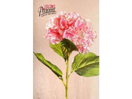Dekorativní květina hortenzie světle růžová - Paramit - F105-P1