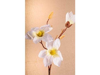 3 88W Aranžovací květina magnolie bílá 70 cm