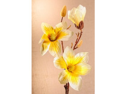 3 88Y Aranžovací květina magnolie žlutá 70 cm