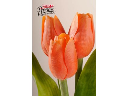 Dekorativní květina francouzský tulipán oranžová - Paramit - 107O