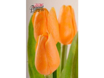Dekorativní květina francouzský tulipán světle oranžová - Paramit - 107O1