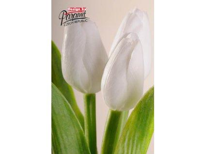 Dekorativní květina francouzský tulipán světle bílá - Paramit - 107W1