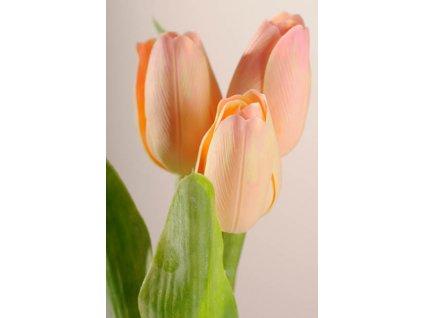 107A1 Umělý tulipán světle broskvový 40 cm