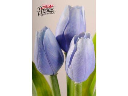 107B1 Francouzský tulipán světle modrý 40cm