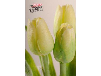 107G1 Francouzský tulipán světle zelený 40cm