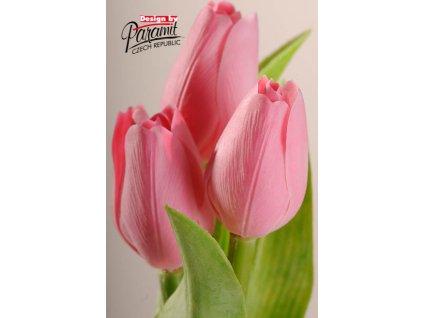 107P5 Francouzský tulipán pastelově růžový 40cm