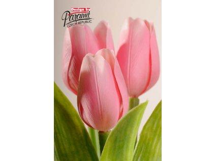107P6 Francouzský tulipán něžně růžový 40cm