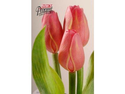 107R4 Francouzský tulipán žluto červený 40cm