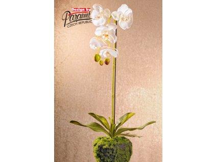 F71423 umělá květina orchidea 58 cm bílá