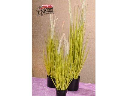 F205 56 umělá tráva 58 cm