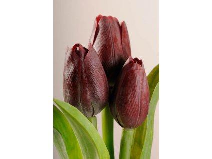 107R5 Francouzský umělý tulipán temně červený 40 cm