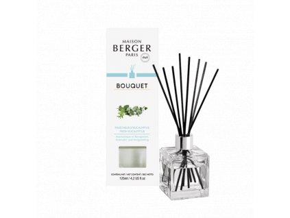 6193 Aroma difuzér Kostka s vůní Eukalyptus 125 ml od Maosn Berger Paris