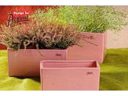 225 20P Cube žardinka růžová 20 cm