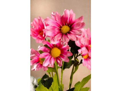 F83408 Dekorační květina Kopretina růžová 68 cm od Paramit