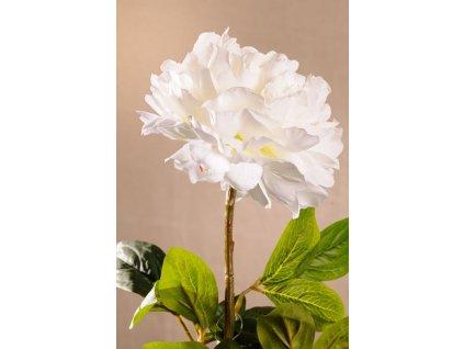 F89514 Dekorační květina Pivoňka bílá 72 cm od Paramit