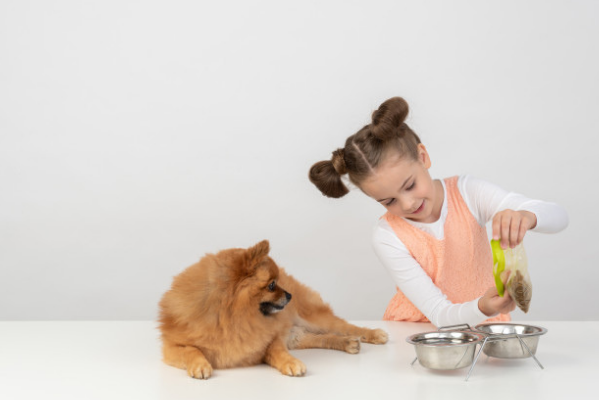 Ako často krmiť psíka?
